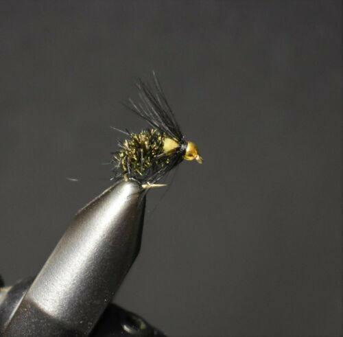 BH Bead Head Pyrite Caddis Nymph Fly Fishing Flies 2 mouches taille 14