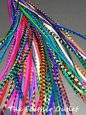 Lot 100 Feather Hair Extensions Grizzly Bulk Multi Color Real ROYAL RAINBOW