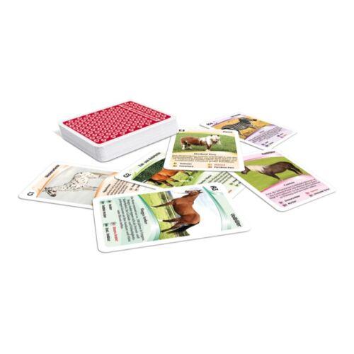32 Karten ASS Altenburger 22572084 Tier-Quartett Pferde