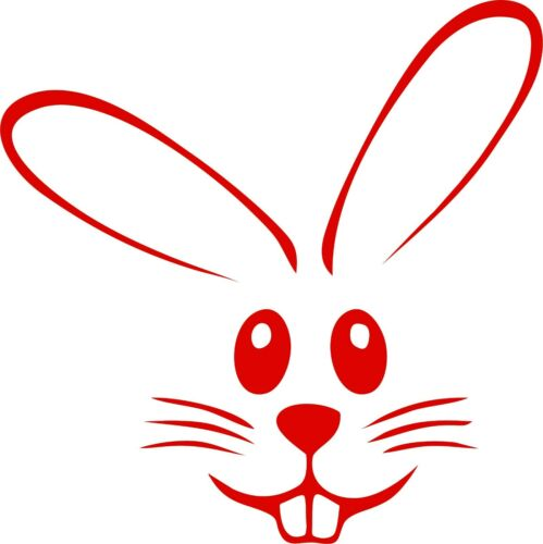 Rabbit Decals Bugs Bunny Car Bumper Window Vinyl Decal Sticker Truck Laptop Wall