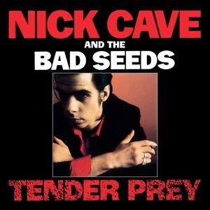 CAVE  NICK & THE BAD SEEDS - TENDER PREY