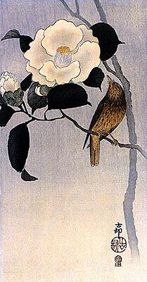 Roaring Tiger 15x22 Japanese Art Print Koson Japanese Asian Art Japan