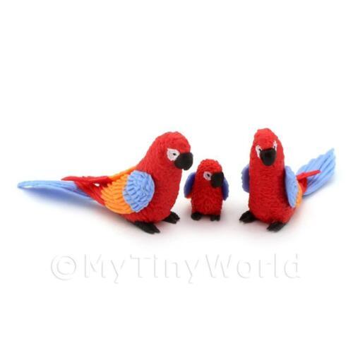 3 Red Casa delle Bambole Miniatura Pappagalli Con Ali Multicolore e Blu Code