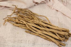 fuer-den-Wintergarten-Tang-Shen-Ginseng-die-Heilende-Wurzel-dekorative-Pflanze
