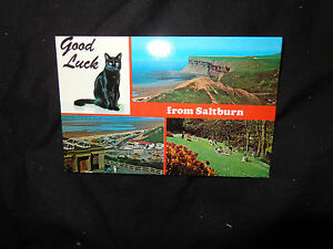 Saltburn-by-the-Sea-Lucky-black-Cat-good-luck-c1970-colourmaster-1-99