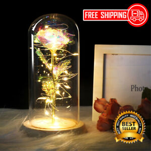 Special Gift For Your Love Galaxy Forever Rose With Led Light