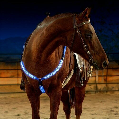 Led Horse Collar Breastplate Harness Riding Head Lights Leather Riding Equipment