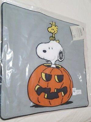 Pottery Barn Kids Teen Peanuts Snoopy Pumpkin Halloween