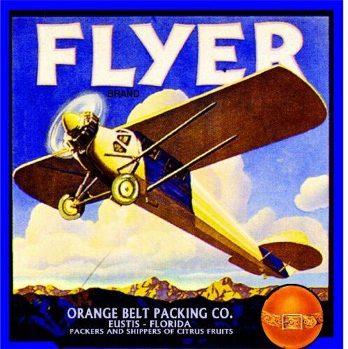 Eustis Florida Flyer Airplane Orange Citrus Fruit Crate Label Art Print