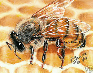 034-Honey-Bee-On-Comb-034-Art-Print-Honeybee-on-Hive-5-034-x-7-034-Giclee-by-Roby-Baer-PSA