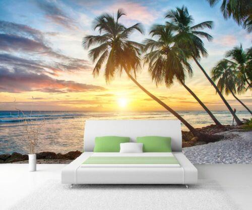 Toile xxl-poster papier peint papier peint nature palmiers sur la plage