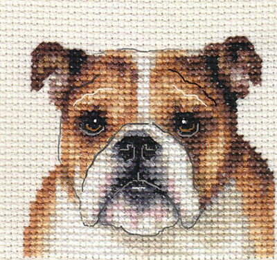 ENGLISH BULLDOG, puppy  ~ Full counted cross stitch kit + All materials