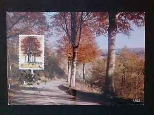 BELGIEN-MK-1970-EUROPA-CEPT-MITLAUFER-TREE-MAXIMUMKARTE-MAXIMUM-CARD-MC-CM-c8674