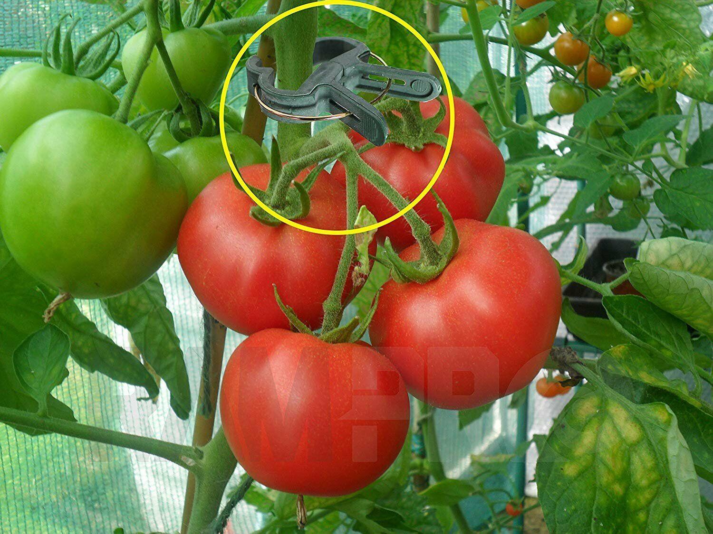 40 Piece Green Gentle Gardening Plant /& Flower Lever Loop Grip+per Clips