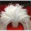 Wholesale-10-2000-Pcs-Beautiful-Rooster-Tail-Feathers-12-14-Inches-30-35cm thumbnail 2