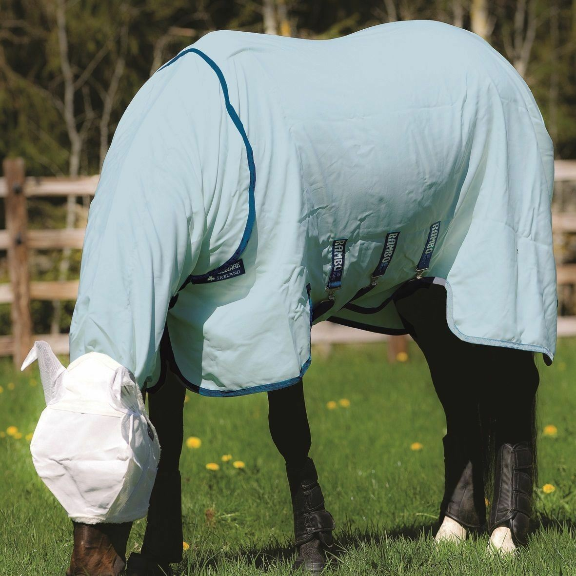 Rambo Sweetitch Hoody Fly Rug Sheet with Vamoose Insect Control FREE Fly Mask