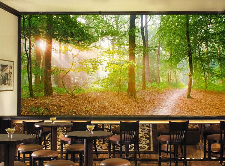 3D Sunlight Forest 754 Wall Paper Murals Wall Print Wall Wallpaper Mural AU Kyra