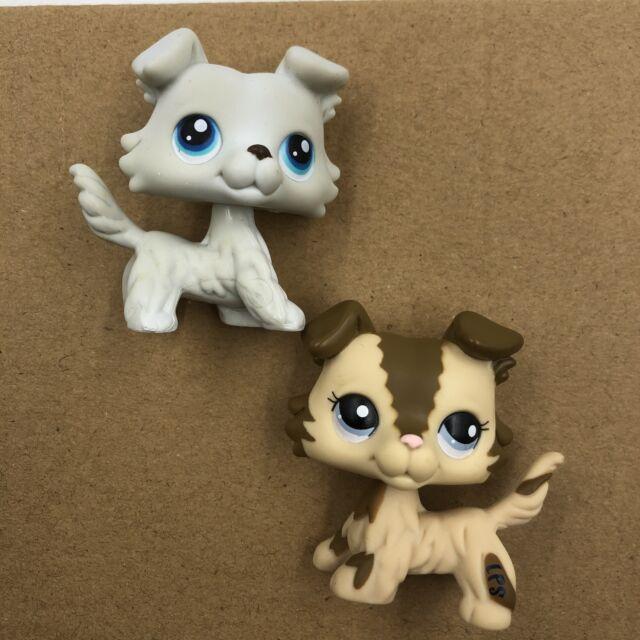 Littlest Pet Shop No Number Lps Toys Purple Eyes Puppy Brown White Collie Dog For Sale Online Ebay