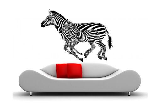 WandTattoo Afrika Tier wandaufkleber Zebra waf13