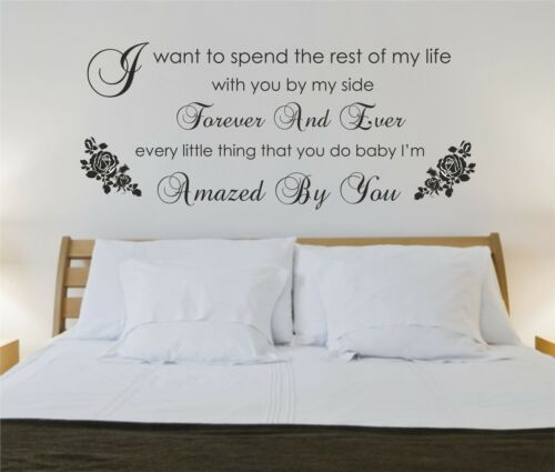 Lonestar Bedroom sg60 Decal Graphic Amazed Music Wall art sticker,decal