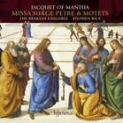 Jacquet of Mantua: Missa Surge Petre & Motets (CD, May-2015, Hyperion)