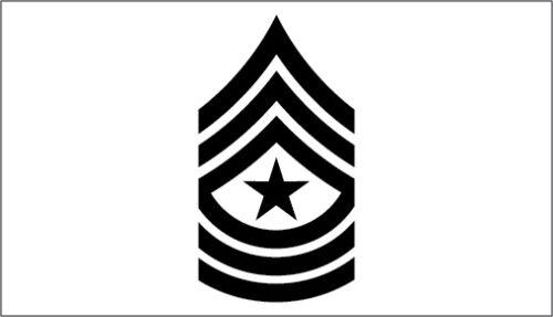 Set of 2 US Army Ranks Vinyl Sticker Decals E-2 Private through E-9 Serg Major