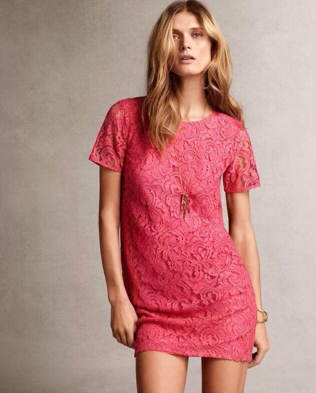 NWT Ann Taylor Rosa Lace Shift Dress sz 0 Soft Desert Rosa