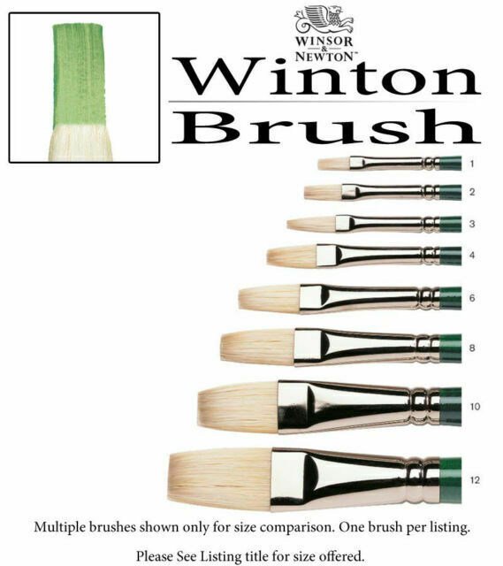 Size 4 Size 4 Winsor /& Newton Winton Bristle Flat Brushes Flat