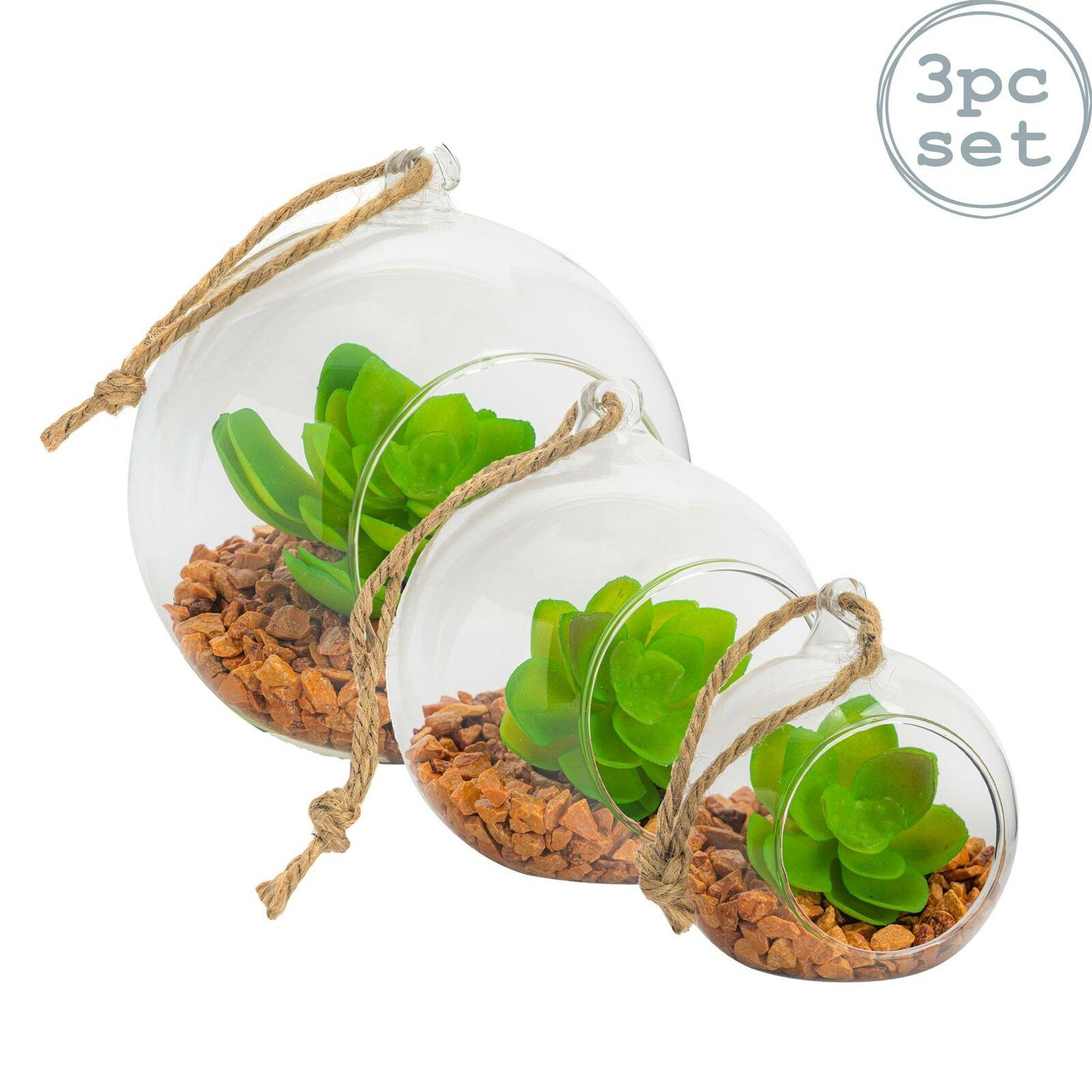 Terrarium Glass Plant Succulent Planter Indoor Hanging Flower Tabletop Set Of 3 For Sale Online