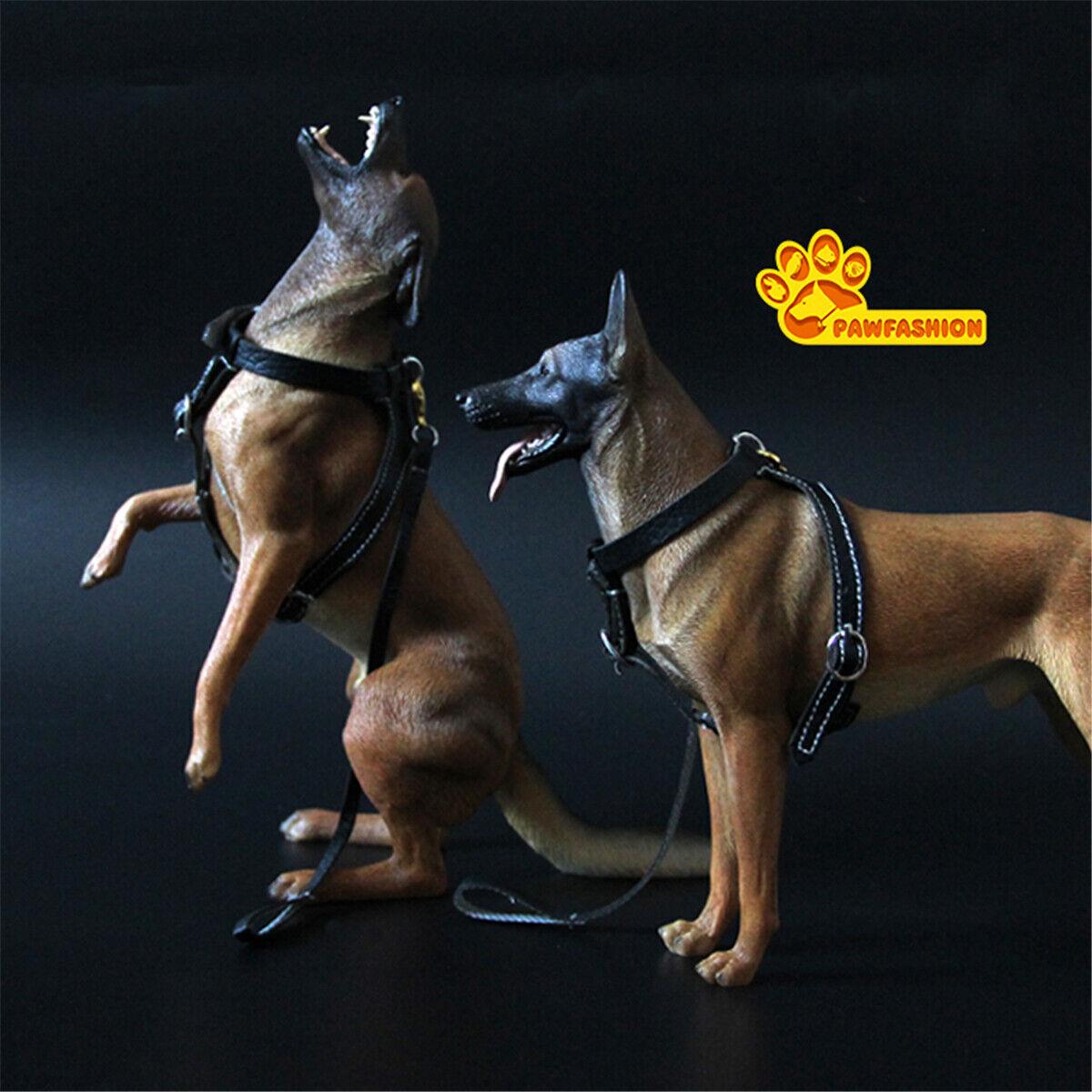 Pawfashion 1 6 Belga Malinois Perro Mascota Figura Animal Colector Modelo Juguete Regalo