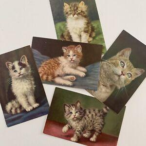Vintage Cat Postcard Edition Stehli Swiss Lot 5 Fluffy Kittens 1950s Merlin