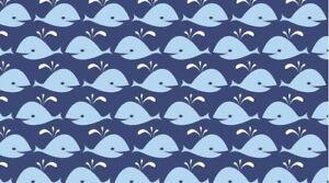 Navy-Blue-Cute-Whales-Rock-Lobster-Kids-Quilting-Craft-Cotton-Fabric-Dear-Stella