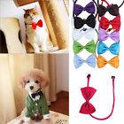 2x Fashion Dog Cat Pet Puppy Toy Kid Cute Bow Tie Necktie Collar Clothes Hot New