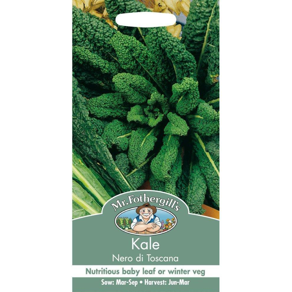 Mr Fothergills Grow Your Own Home Grown Vegetables Kale Nero Di Toscana Seeds