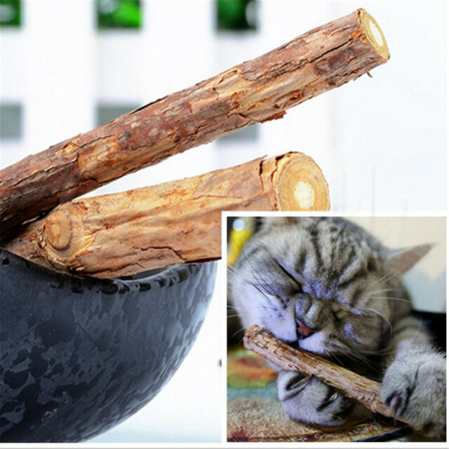 2x Cat Cleaning Teeth Catnip Cat Molar Toothpaste Silvervine Cat Snacks Sticks
