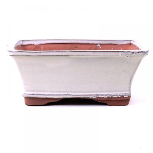 Bonsai-bol rectangulaire 17,5 x 14 x 7 cm crème couleurs 22014