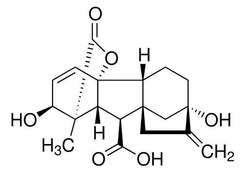 25g  Gibberellinsäure, GA3, Phytohormon, Pflanzenhormon, Saatgut Keimhilfe