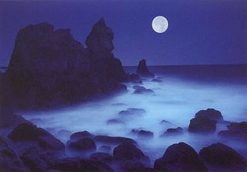 LANDSCAPE POSTER 24x36 CALIFORNIA COAST HARTSHORN OCEAN MOON NIGHT 36106