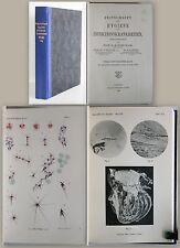 Koch Zeitschrift für Hygiene und Infektionskrankheiten 1906 Bd 54 Medizin xz