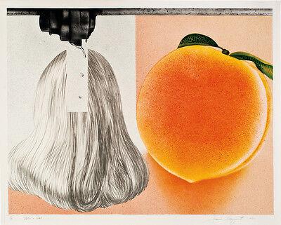 "JAMES ROSENQUIST Signed 1980 Original Color Lithograph - ""When a Leak..."""