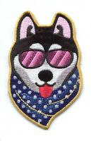 Cool Dog Sunglasses & Scarf Embroidered Iron-on Patch Free Shipping -c P3565