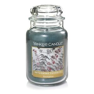 EUCALYPTUS-LARGE-YANKEE-CANDLE-JAR-FREE-SHIPPING-amp-GREAT-FRESH-SCENT