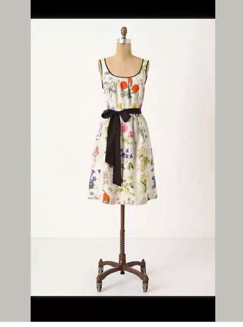 NWT Anthropologie Tuileries Tuileries Tuileries Garden Dress Amazing Size 2 524ec3