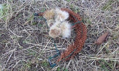 Consegna Veloce Caso Di Uccelli Pavimento Caso Trappola Uccelli Piege Oiseaux Bird Trap Trampa Pajaros-