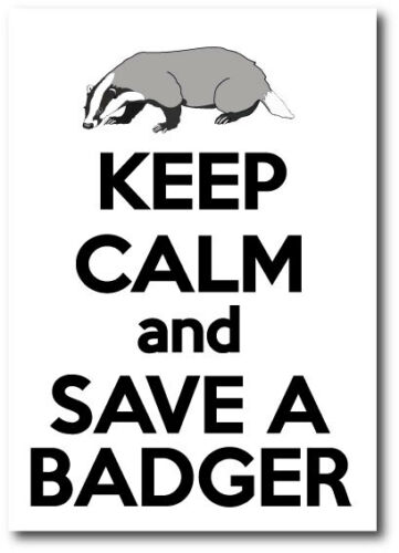 Badgers Wild Life Vinyl Sticker 15 cm x 17 cm KEEP CALM AND SAVE A BADGER