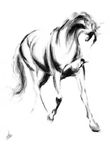 Majestic II by Amy Goodman Horse Print 19x25