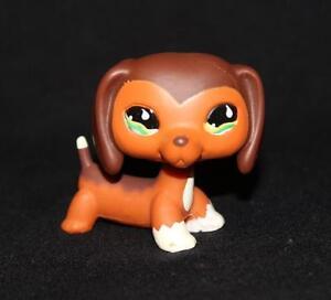 Littlest Pet Shop Tan & Brown DACHSHUND #675 Green Teardrop Eyes AFTERMARKET