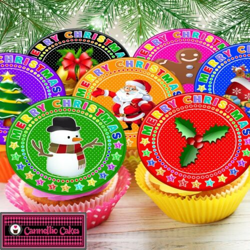 MIXED CHRISTMAS FESTIVE IMAGES EDIBLE CUPCAKE TOPPER DECORATIONS MC11