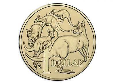 2017 Australia $1 Mob Of Roos Coin From Mint Roll UNC one dollar