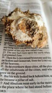 Brimstone-Biblical-Evidence-Sodom-Gomorrah-Secret-Knowledege-Discovery-Ron-Wyatt
